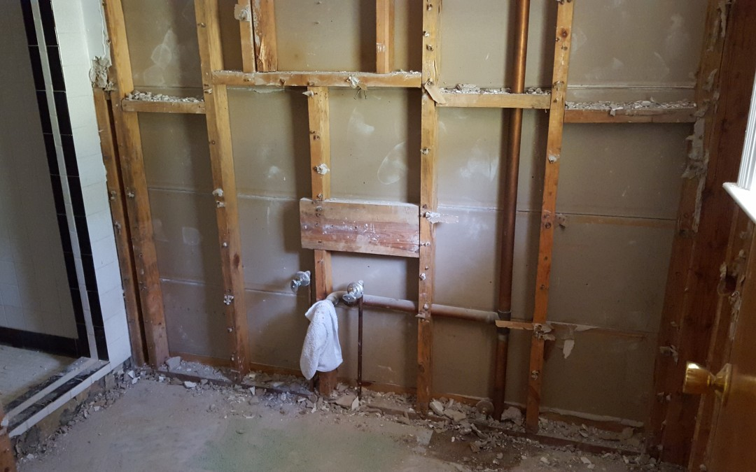 Bathroom demolition, part 2